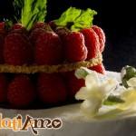 torta-gelato-1-logo