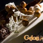 torta-gelato-3-logo