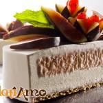 torta-gelato-4-logo